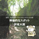 伊尾木洞でもののけ姫のような世界を手軽に冒険!アクセスや観光ポイントを解説