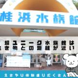 桂浜水族館のアクセス・所要時間・体験レポ!えさやり体験がたくさんで楽しいよ