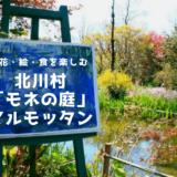 高知「モネの庭」マルモッタンをもっと楽しく!見頃・見どころ・楽しみ方を解説!