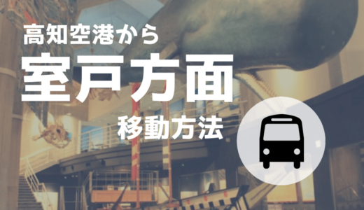 高知龍馬空港から【室戸岬方面】までの移動方法!