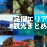 高知土佐清水市:足摺エリアの観光地を超詳しくまとめてみた