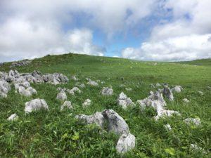 四国カルストの風景
