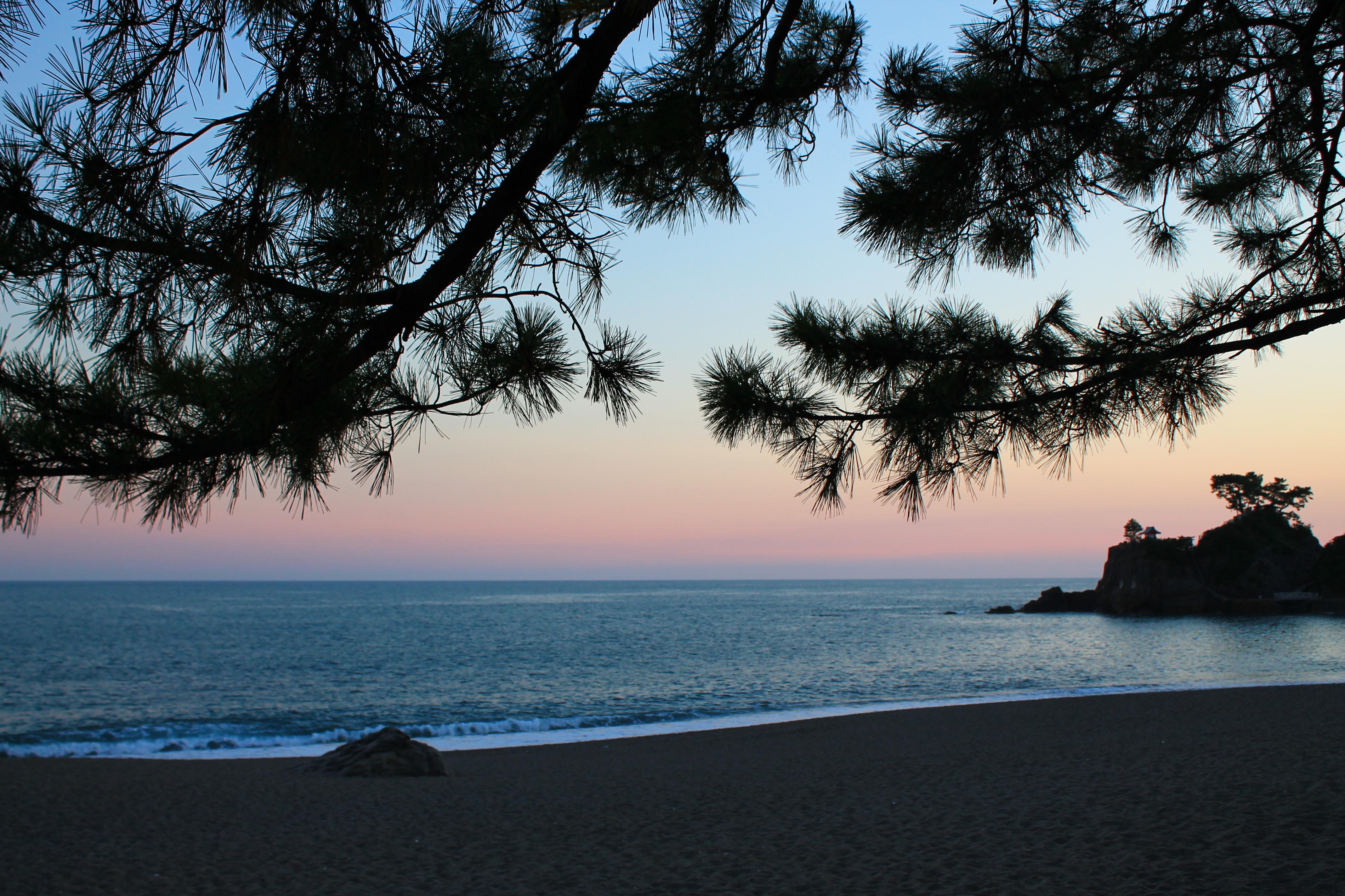 夕日が沈む桂浜