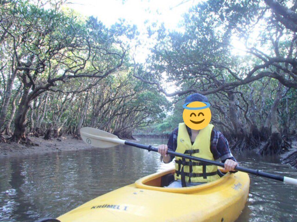 黒湖の森:マングローブのカヌー体験