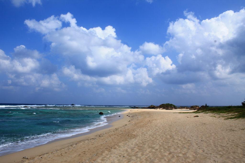 奄美大島:土盛海岸