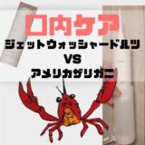 ジェットウォッシャードルツEW-DJ10-Wレビュー【口内に潜むザリガニ】