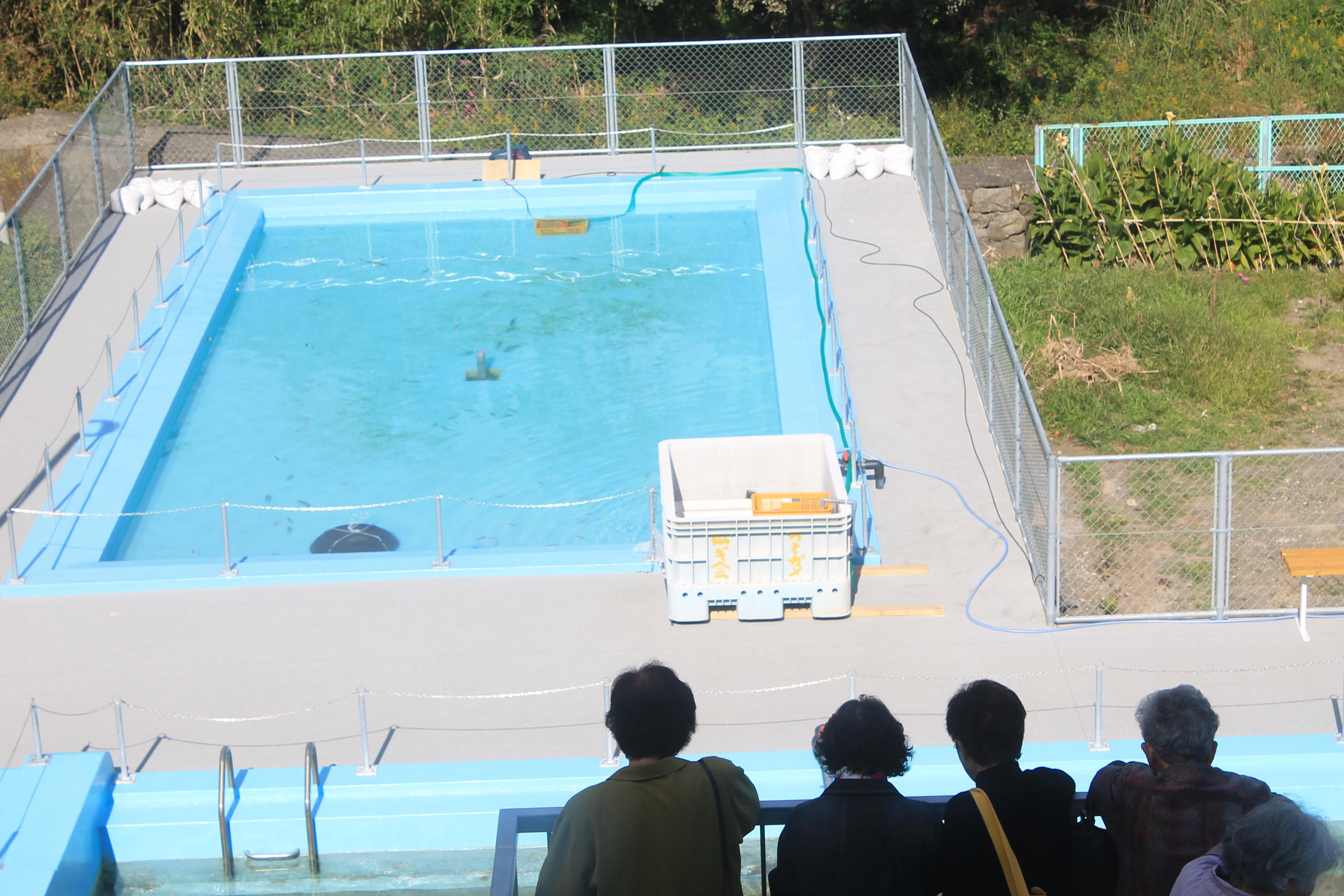 むろと廃校水族館の大プール