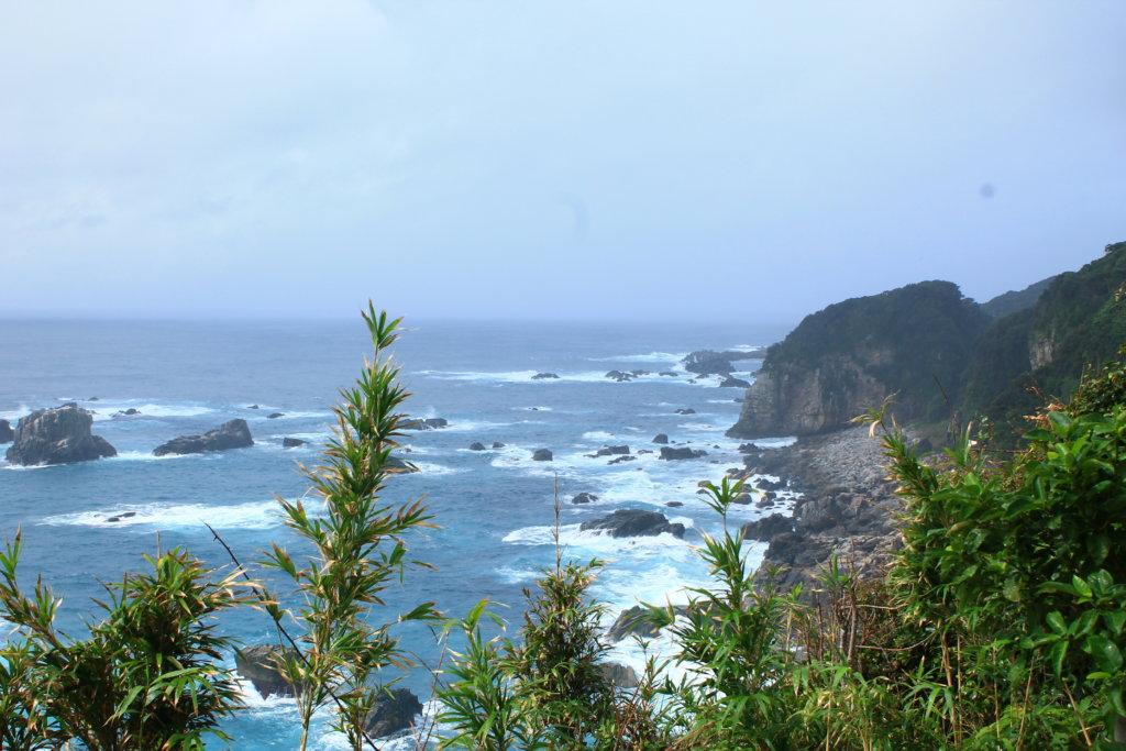 雨の日の足摺岬の風景