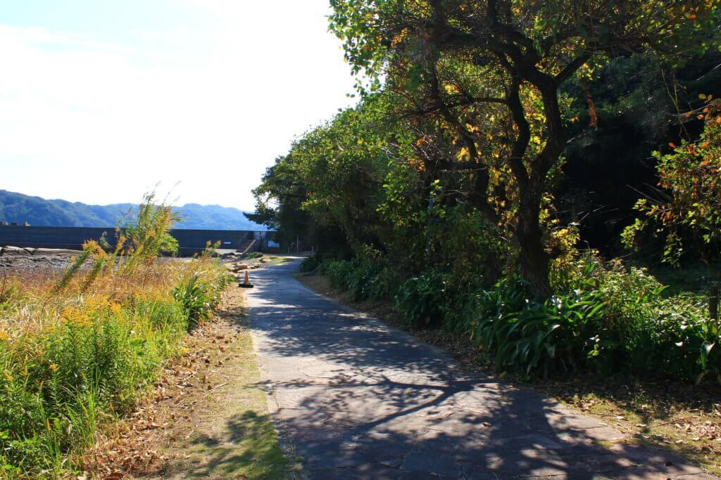 竜串海岸への道
