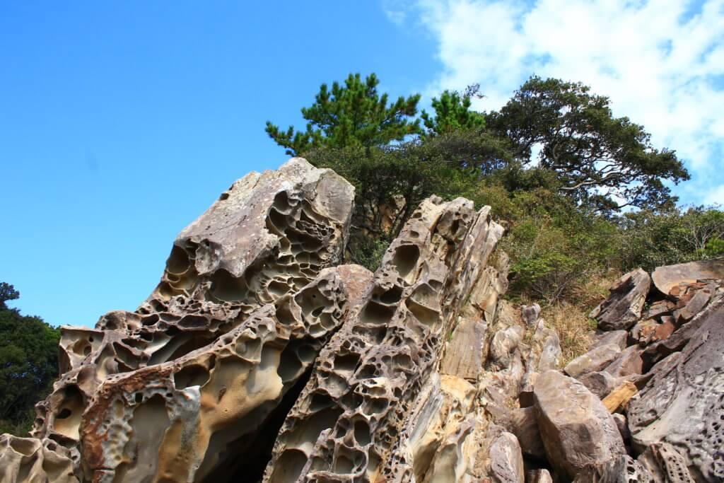 竜串海岸:タフォニ