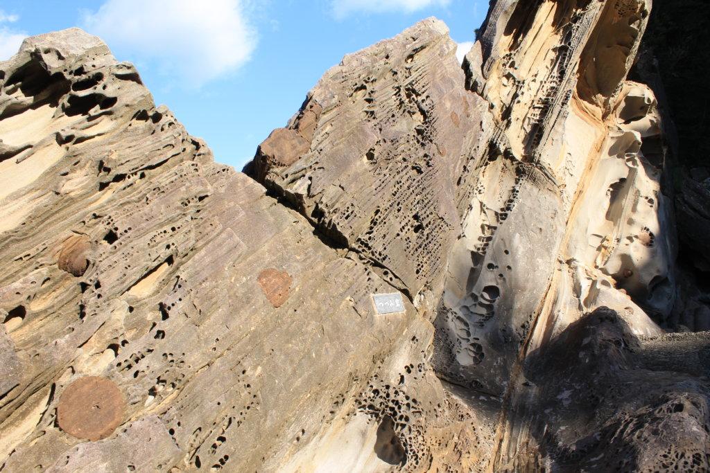 竜串見残し海岸:つづみ岩