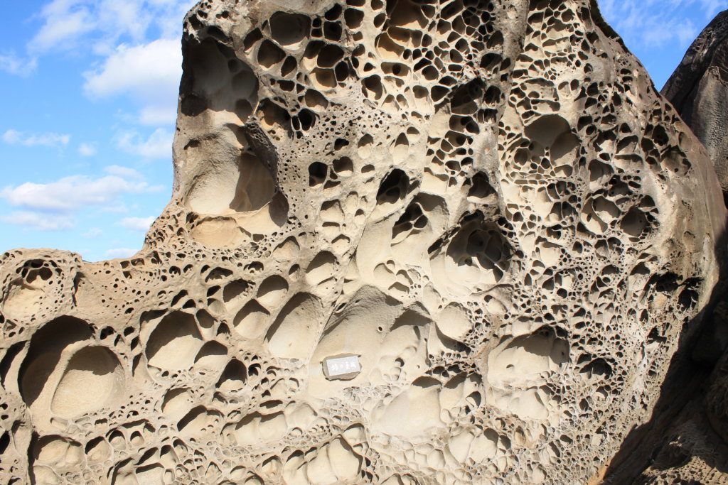 竜串見残し海岸:ハチの巣城