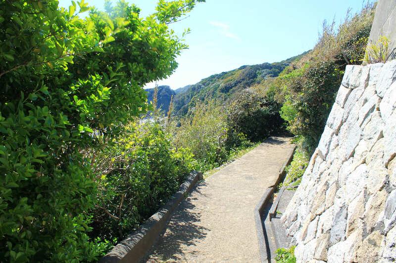 足摺岬の道