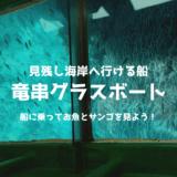 竜串のグラスボートで海に出よう!美しいサンゴや魚を見れておすすめ!