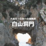 白山同門は足摺岬へ来たなら是非寄りたいスポット!日本一の海食洞を見逃すな!