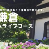 【6月の鎌倉観光】大人の日帰りドライブコースを紹介します!