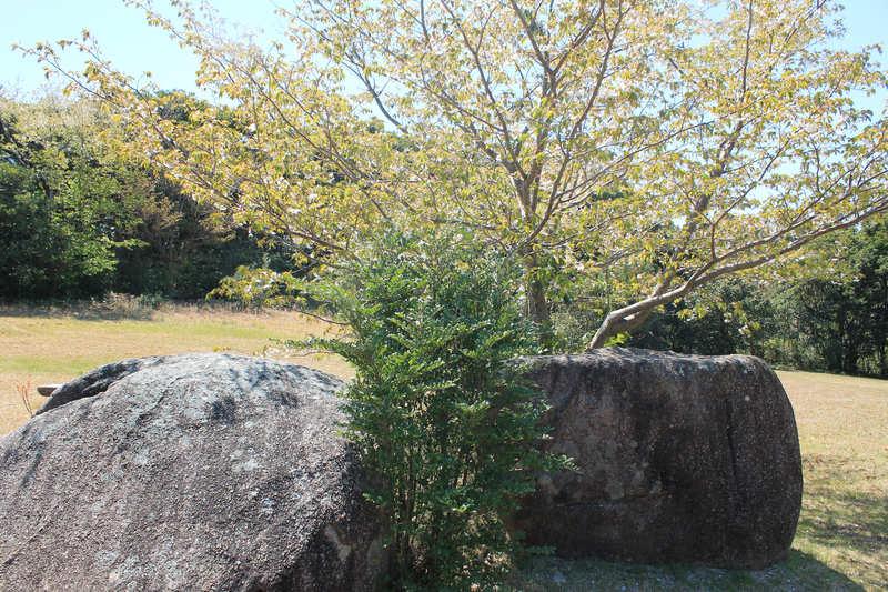 唐人駄場遺跡 園地の石