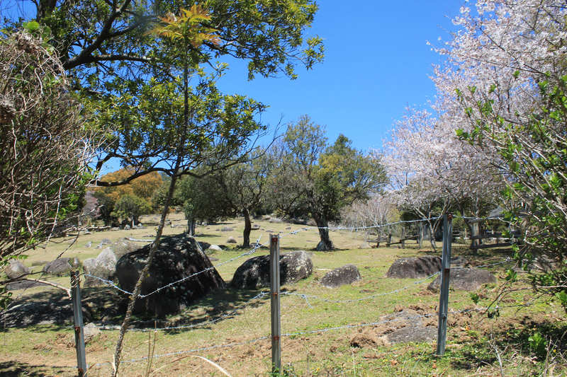 唐人駄場遺跡 柵がある向こう側は牧場