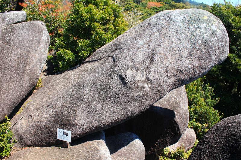 唐人駄場巨石群の亀頭岩