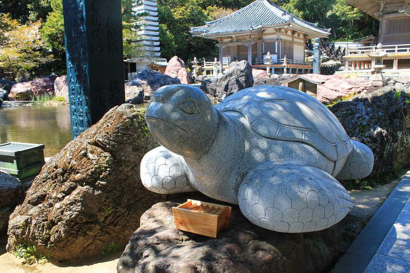 金剛福寺の太師亀