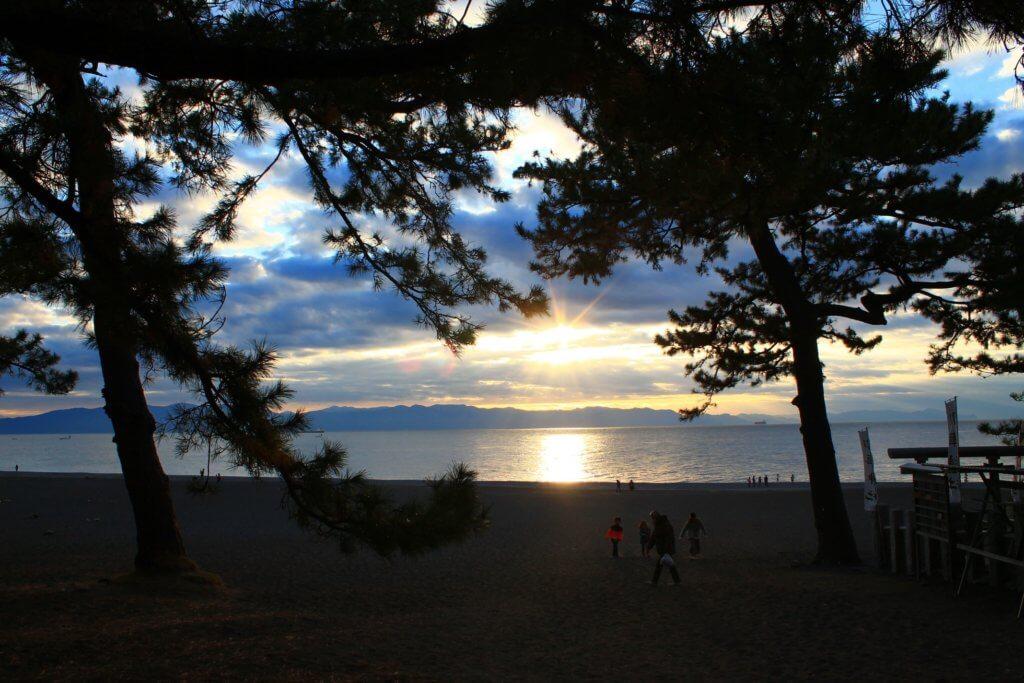 三保の松原海へ抜ける道