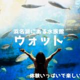 浜名湖の水族館ウォットがばか面白い!体験がいっぱい!楽しく学べる!