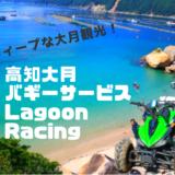 柏島周辺をバギーで回った体験レポート!Lagoon Racingでディープな観光をしよう