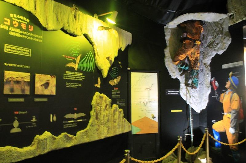 竜ヶ岩洞の洞窟資料館